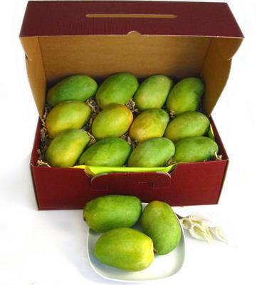 mango gifts